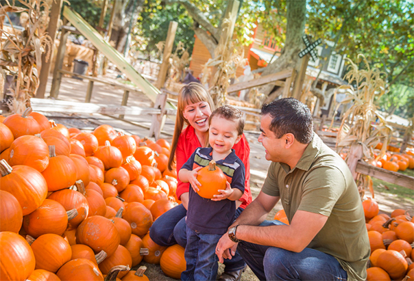 Smiling couple with young child picking out a pumpkin at a pumpkin patch.